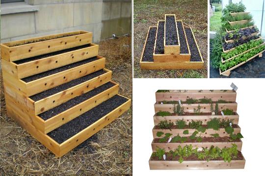 What Is Vertical Gardening? 101 | Grow Green Food