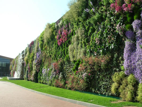 vertical_garden_wall