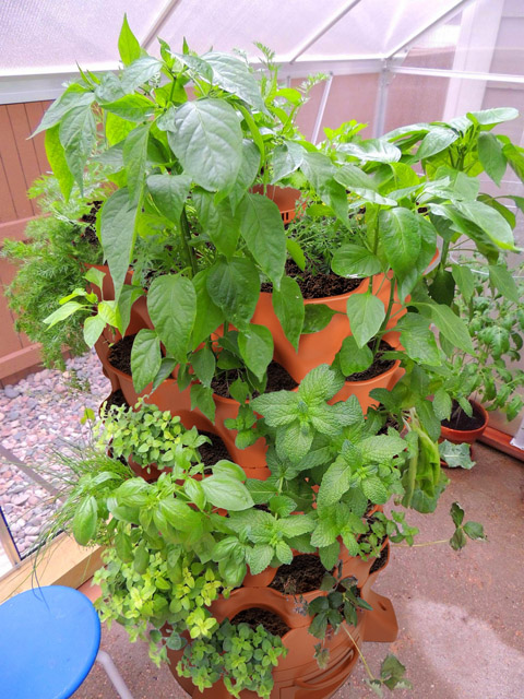 garden_tower_2_grow