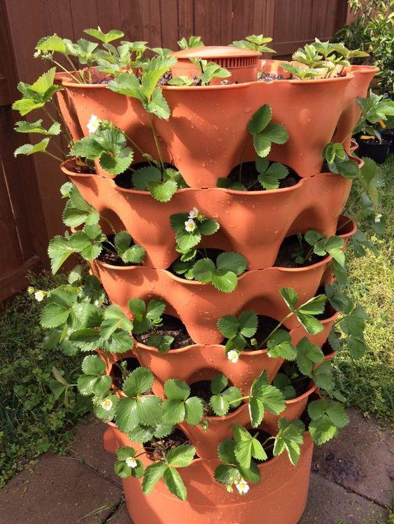6 best strawberry planters grow green food - Garden tower vertical container garden ...